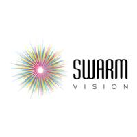 Swarm Vision