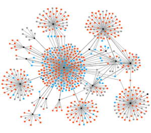Organizing Within Networks